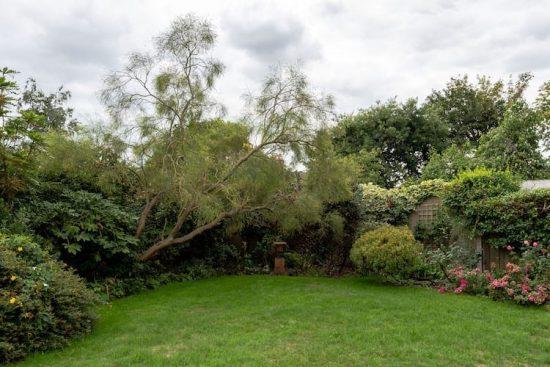 tranquil-vale-blackheath-se3-property-for-sale14